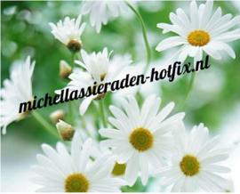 Witte bloemen 50x40 cm