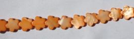 Schelpkraal Bloem Oranje