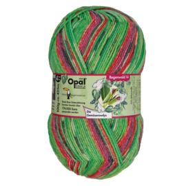 Sokkenwol Opal Regenwald 9620