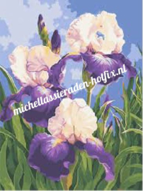 Diamond Painting Irissen 40x50 cm