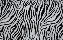 Folie Print Zebra
