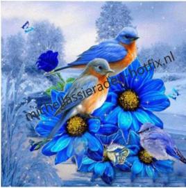 Vogeltjes op blauwe bloem