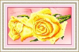Gele Roos 39x37 cm