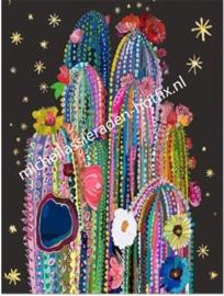 Kleurige Kaktussen