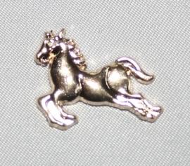 TS Paardje Gold