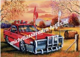 Rode Auto 60x80 cm