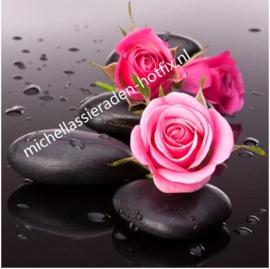 Rose Rozen 40x40 cm