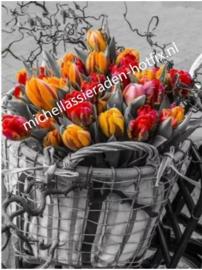 Fietsmand met tulpen