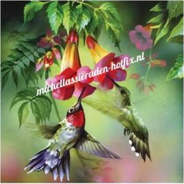 Diamond Painting Vogels en bloemen 50x50 cm