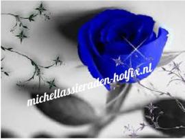 Blauwe roos 50x37 cm