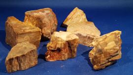 Versteend hout ruw klein