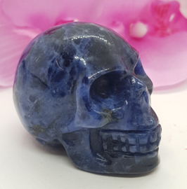 Sodaliet Skull