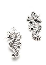 Zeepaardje bedel - zilver