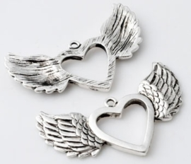 Vleugels met groot hart