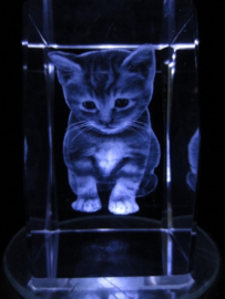 Poesje/kitten laserblok