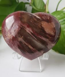 Versteend hout hart