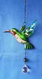 Kolibrie met 3cm bol