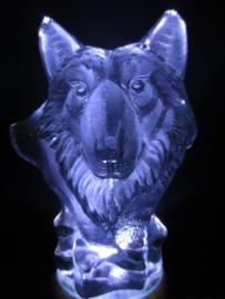 Wolf - platte achterkant