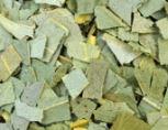 Eucalyptusblad thee