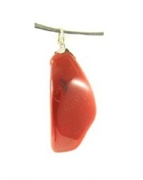 Jaspis rood hangertje