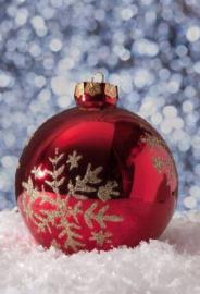 <<<03-10-2020>>> Witte Kerst: feit of fabel?