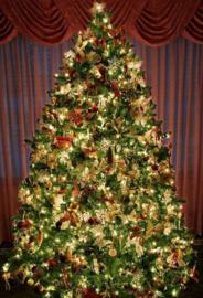<<<07-03-2019>>> De mooiste kerstboom versieren?