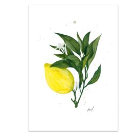 """Kaart """"Lemon"""""""