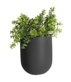 """Wandplantenpot """"Oval"""" zwart"""