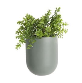 "Wandplantenpot ""Oval"" groen"