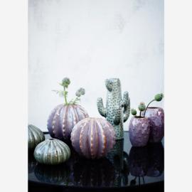 "Vaas ""Cactus"""
