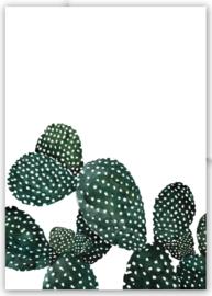 """Kaart """"Cactus"""""""