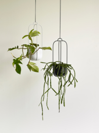 "Plantenhanger ""Basket"""