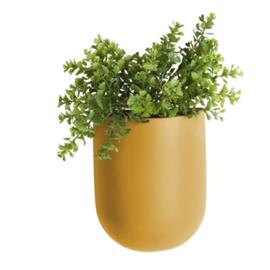 """Wandplantenpot """"Oval"""" oker"""
