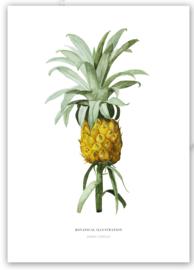 """Kaart """"Ananas"""""""