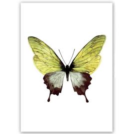 """Kaart """"Vlinder"""" groen"""