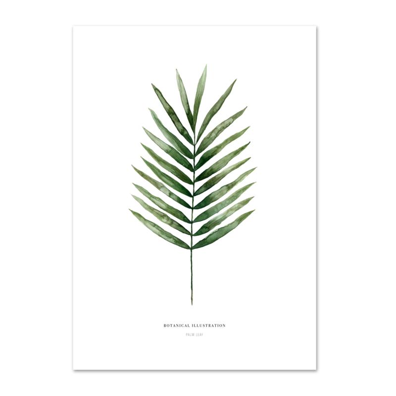 "Kaart ""Palm leaf"""
