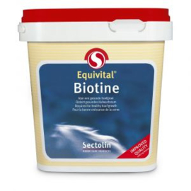 Equivital Biotine