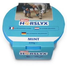 Horslyx Mint Balancer Mini