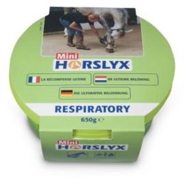 Horslyx Respiratory Balancer Mini