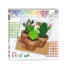 Pixelhobby Pixel set cactussen 12 x 12 cm