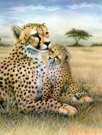 Royal & Langnickel painting by numbers leopard PJS43-3T