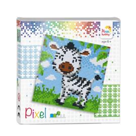 Pixelhobby Pixel set zebra 12 x 12 cm