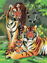 Royal & Langnickel painting by numbers tigers PJS27-3T