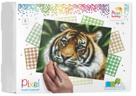 Pixelhobby Pixel kit 4 basisplaten Tiger 20,3 x 25,4 cm 90028