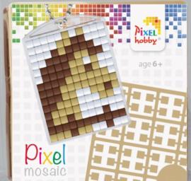 Pixelhobby Pixel mosaic medaillon startset paard sleutelhanger