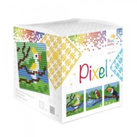 Pixelhobby Pixel mosaic kubussetje tropische vogels 6,2 x 6,2 cm