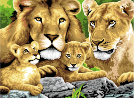 Royal & Langnickel painting by numbers pripride of lionsde of lions PJL4-3T