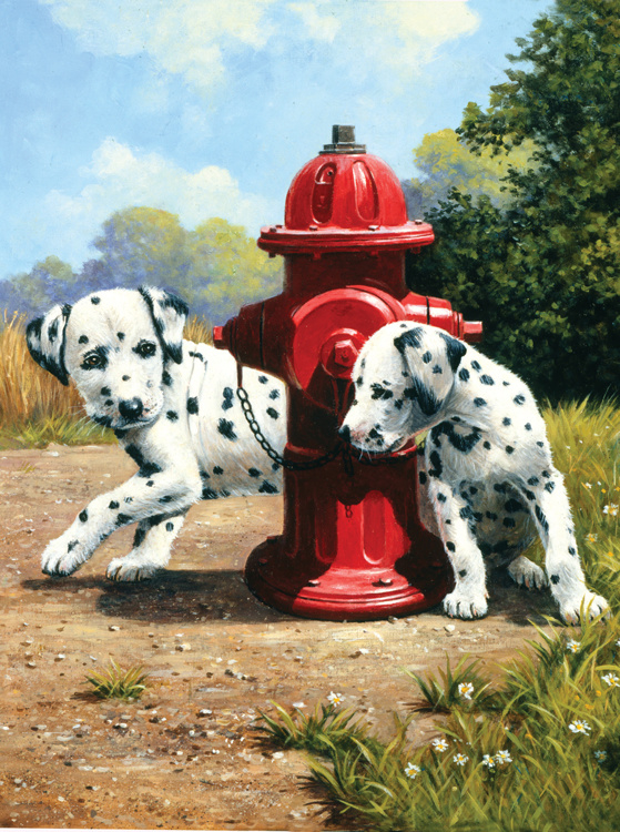 Royal & Langnickel painting by numbers peek-a-boo PJS80-3T
