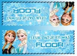 Kinderfeest traktatiezakjes Frozen, setje van 5 stuks