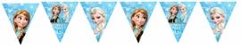 Kinderfeest vlaggenslinger Frozen